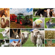 Grafika 1500 Parça Collage - Farmyard Animals Puzzle