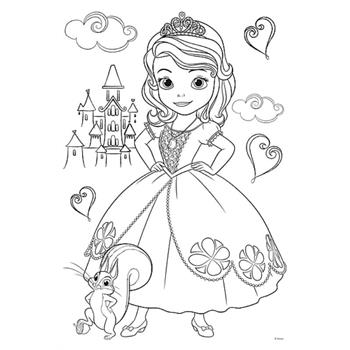 36515-trefl-color-puzzle-20-disney-sofia-the-first-34.jpg