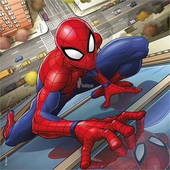3x49p-puz-spiderman_51.jpg
